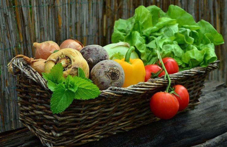 Pautas para llevar una vida saludable - The Beauty Concept